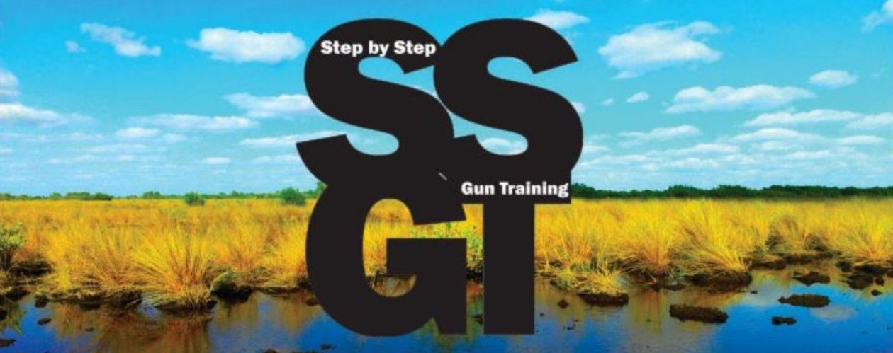 Step by Step Gun Training